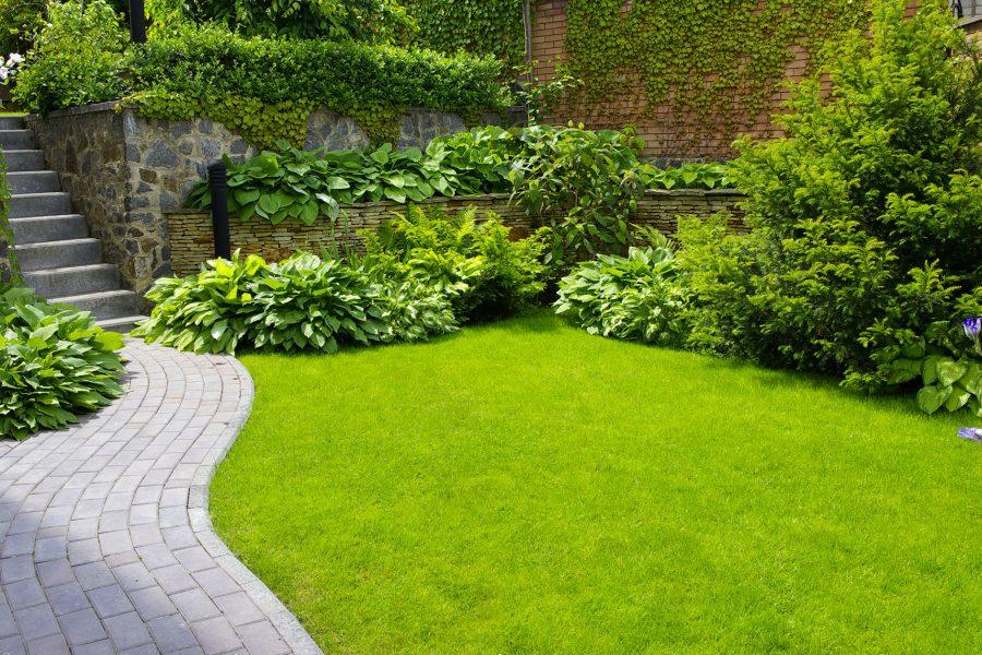 giardinaggio e manutenzione giardini